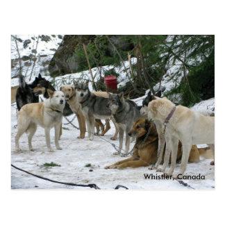 Whistler, Canada Postcard