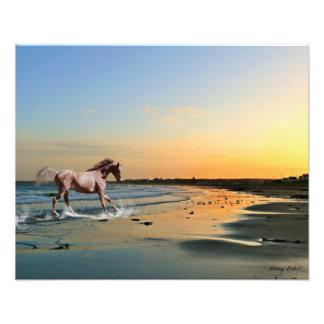 Whitburn Beach Sunderland Art Print Photo