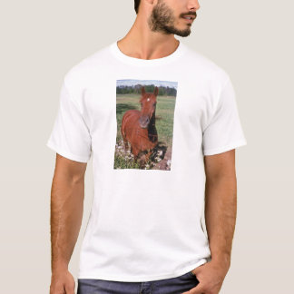 white American saddlebred flowers T-Shirt