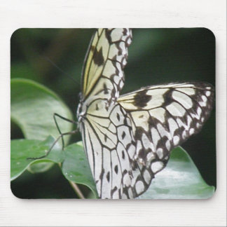 White and Black Butterfly Mouse Pad