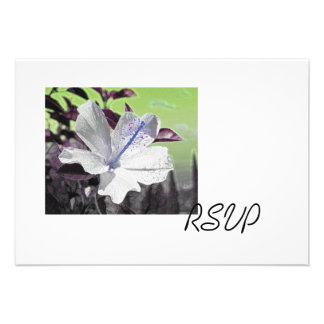 White and Blue Hibiscus RSVP Cards