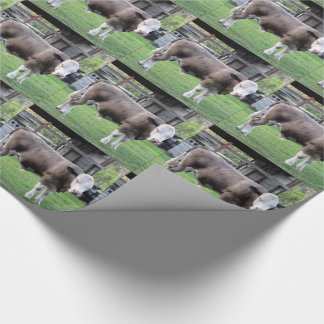White and Brown Bull Wrapping Paper