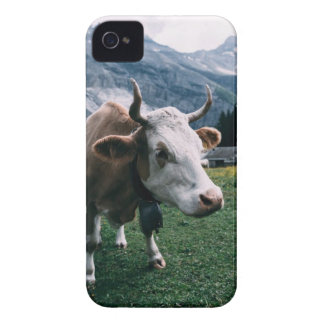 White and Brown Cow iPhone 4 Case
