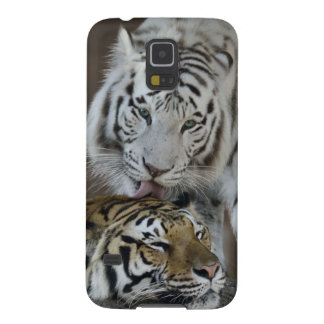 White And Brown Tigers Resting Case For Galaxy S5