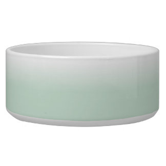 White and Mint Color Fade Large Pet Bowl