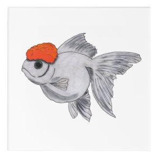 White and Orange Oranda Goldfish Aquarium Pet Fish Acrylic Wall Art