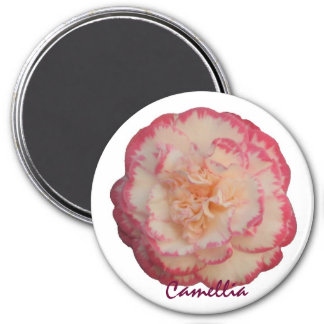 White and Pink Camellia Magnet
