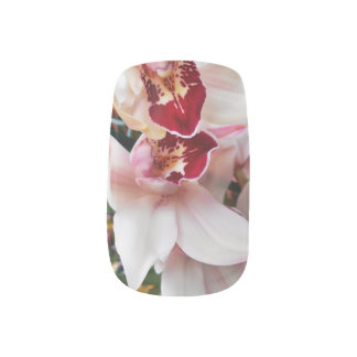 White and Pink Phalaenopsis Orchid Minx Nail Art