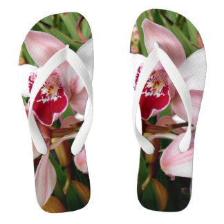 White and Pink Phalaenopsis Orchid Thongs