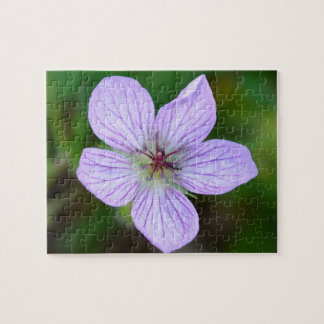 White and Pink Wildflower in the Sandia Mountains Puzzle