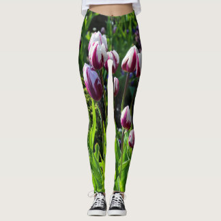 White-and-Purple Flaming Flag Triumph Tulips Leggings