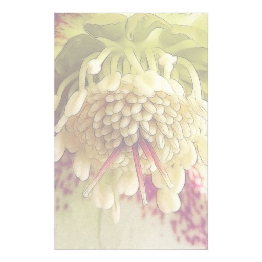 White And Purple Hellebore Customized Stationery