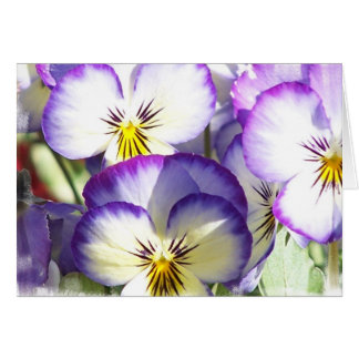 White and Purple Violas Greeting Card