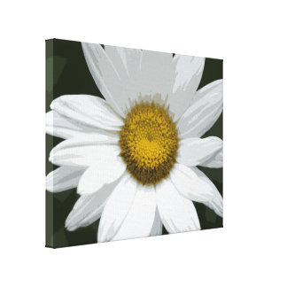 White and Yellow Daisy Flower Canvas Print