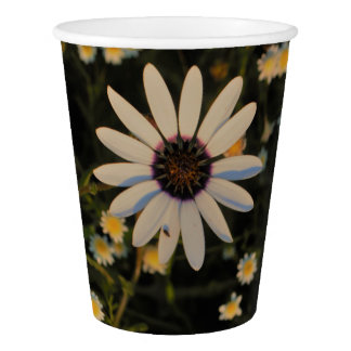 White and yellow daisy flowers paper cup