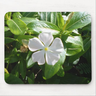 WHITE AND YELLOW FLOWER MOUSE PAD