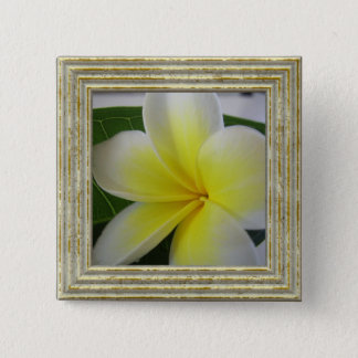 White And Yellow Frangipani Flower 15 Cm Square Badge