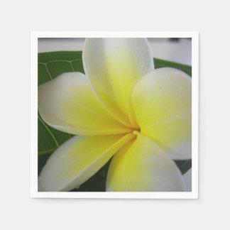 White And Yellow Frangipani Flower Disposable Napkin