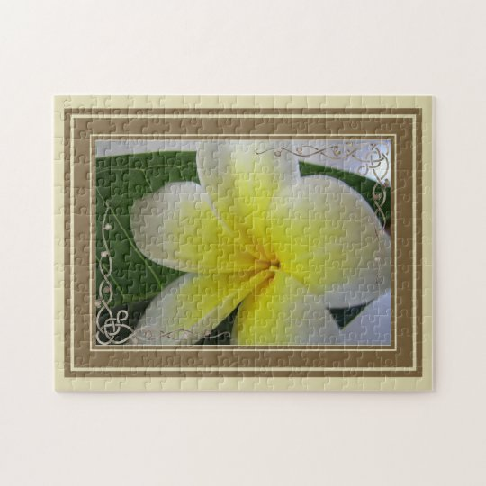 White And Yellow Frangipani Flower Jigsaw Puzzle