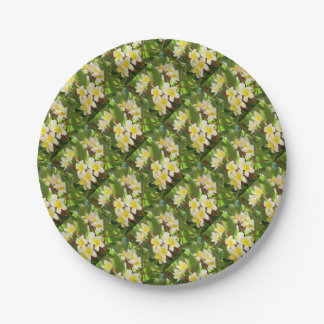 White and Yellow Frangipani Flowers with Leaves Paper Plate
