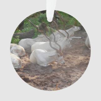 White Antelope Ornament