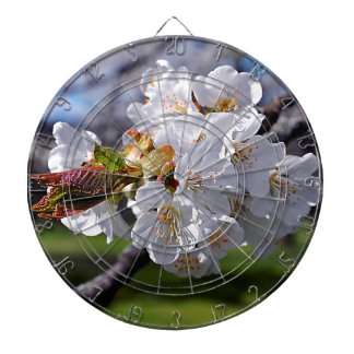 White apple blossoms in spring dartboard