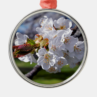 White apple blossoms in spring Silver-Colored round decoration