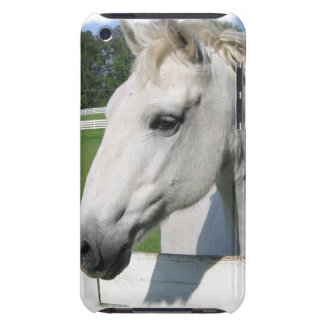 White Arabian Horse iTouch Case iPod Touch Cover