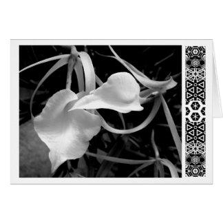 White Arrows Card