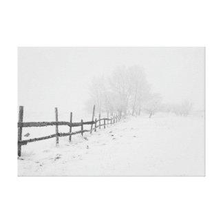 White as the snow. canvas print
