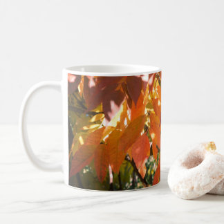 White ash (Fraxinus americana) fall color Coffee Mug