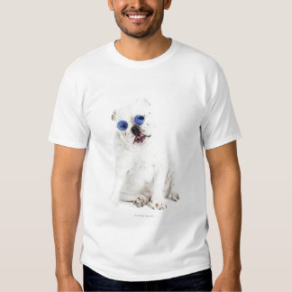 white background, white bulldog, blue tinted tees