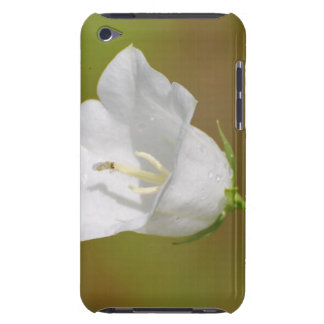 White Balloon Flower iTouch Case iPod Case-Mate Case