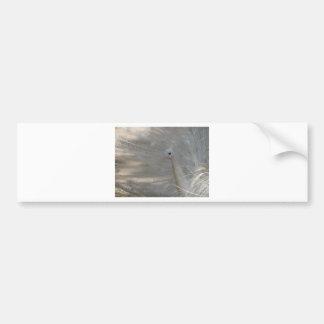 White Beauty Car Bumper Sticker