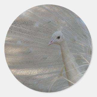 White Beauty Round Sticker