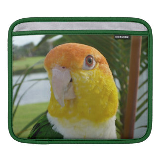 White Bellied Caique Parrot iPad sleeve
