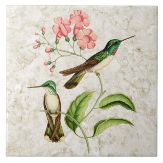 White Bellied Hummingbirds Vintage Nature Art Large Square Tile