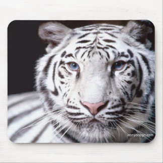 White Bengal Tiger Photography Mouse Pads