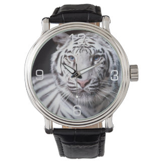 White Bengal Tiger Photography Wrist Watches