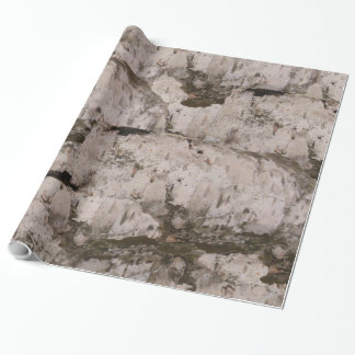 White Birch Bark Wrapping Paper
