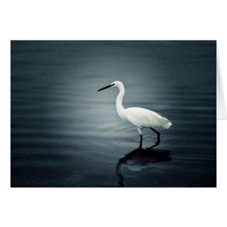 White bird greeting card` greeting card