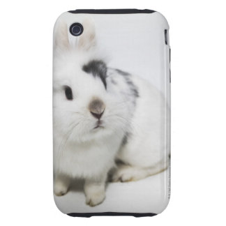 White, black and brown rabbit tough iPhone 3 covers