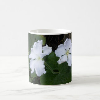 White Blooms of the Gourds Coffee Mug