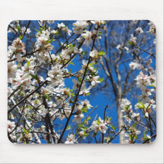 White Blossom Flower Mouse Pad