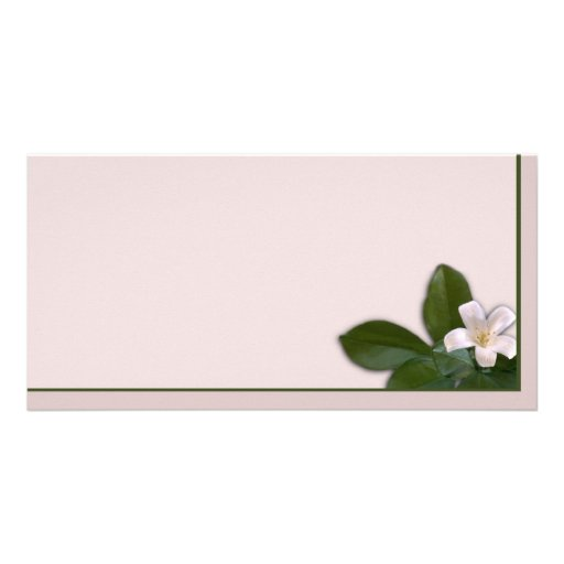 White Blossom Photo Card