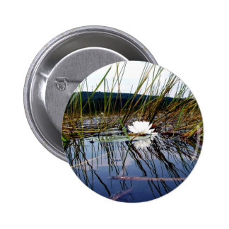 White Bog Lilly Pad Pinback Buttons