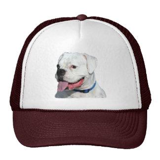 White Boxer hat