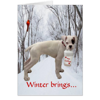 White Boxer Holiday Card