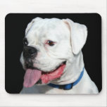 White Boxer mousepad