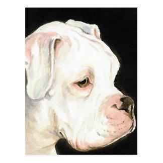White Boxer Original Dog Art Postcard